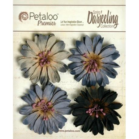 Flowers - Daisy - Grey