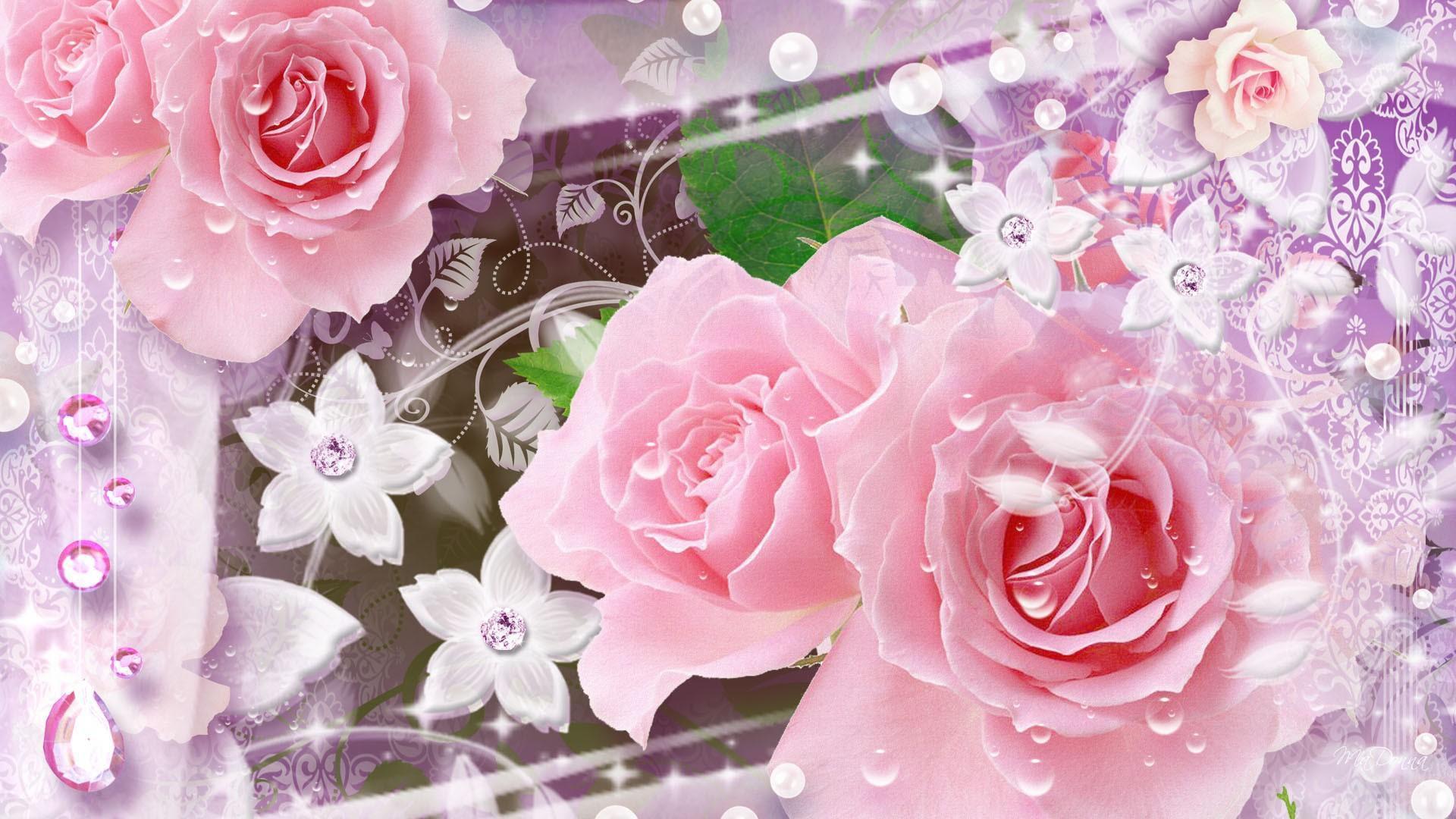 Gambar Bunga Full Layar Gambar Bunga