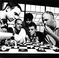 Tortoise playing chess.