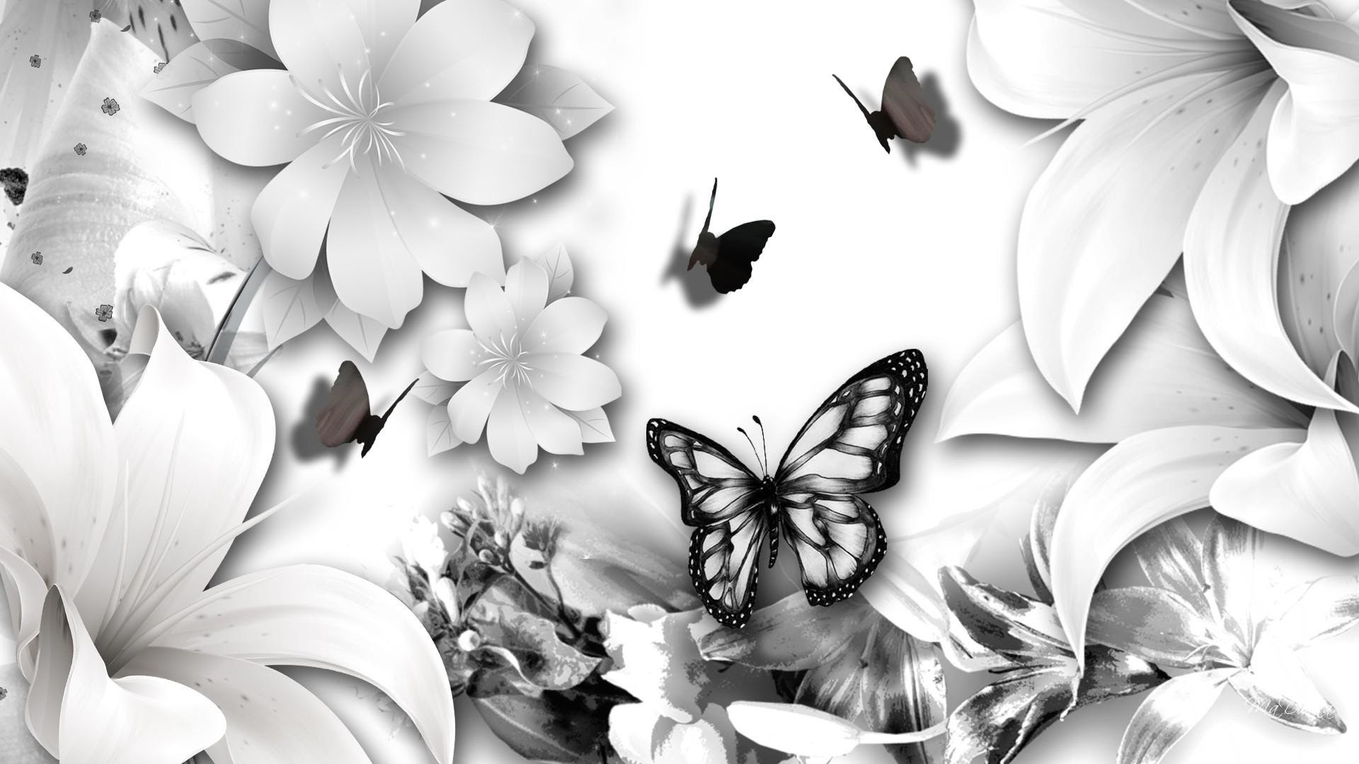 Black Butterfly Background (59+ images)