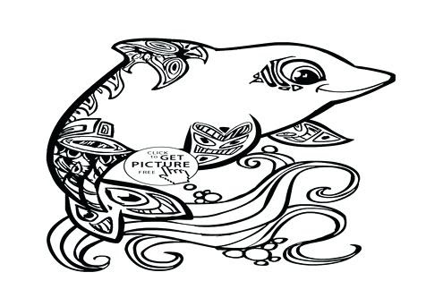 coloring pages of baby dolphins at getdrawings  free download