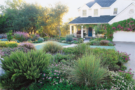 how to get rid of turf grass