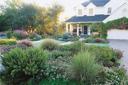 Landscape Design Ideas Without Grass on No Grass Backyard  id=56225