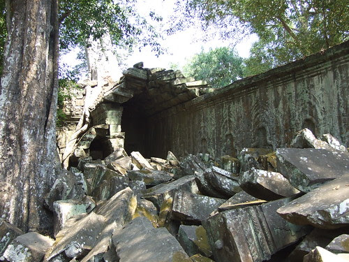 Forces of Nature in Ta Prohm