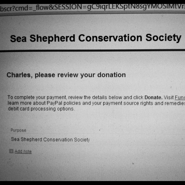 Christmas Gift - SeaShepherd Donation