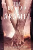 The Ballad of Aramei: The Darkwoods Trilogy