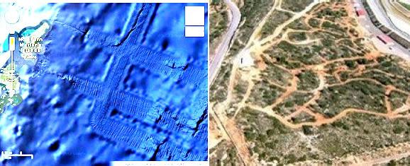 Comparación entre pistas actuales y las pistas encontradas en el fondo marino del Océano Pacífico