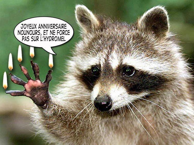 Carte Anniversaire Humoristique Animaux, Anniversaire... | LisaoycWilson site