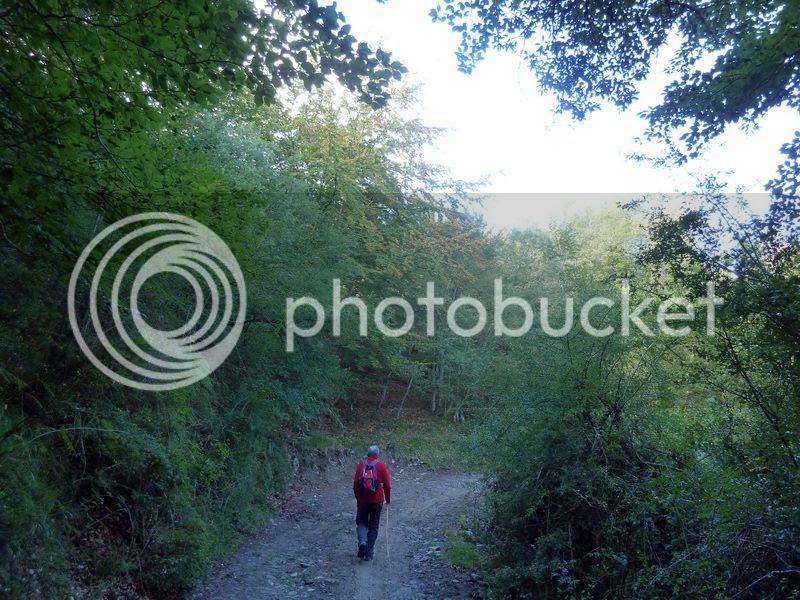 photo P1080865_resize.jpg