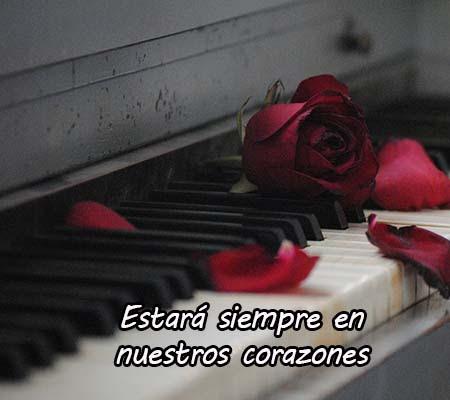 Imagenes De Rosas De Luto