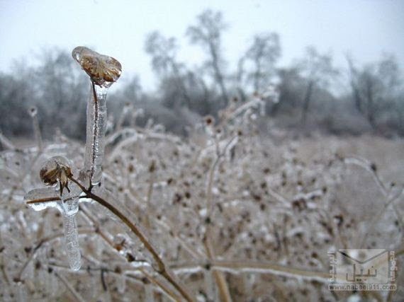 31-freezing_rain