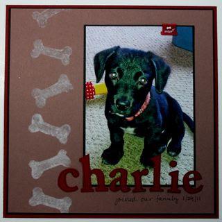 Stamp-n-flock-charlie
