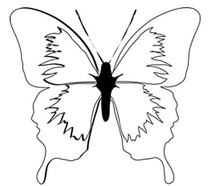 Vorlage schöner Schmetterling als Malvorlage