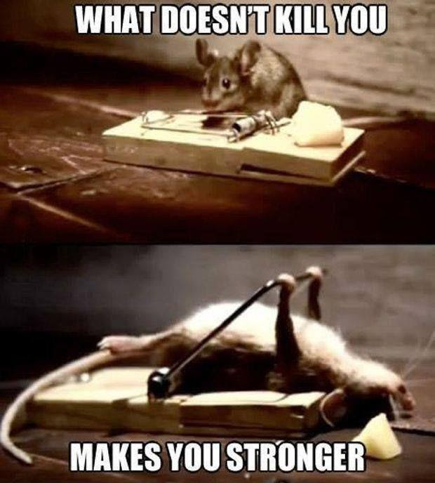 What Doesnt Kill You Makes You Stronger Picture Quotes