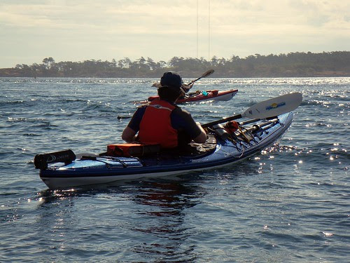 2008-08-10 Chatham Island 447