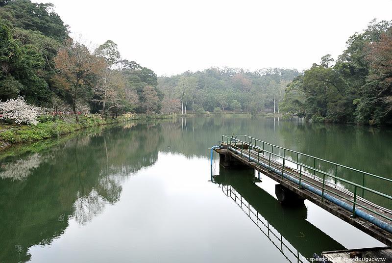 後慈湖 (29)