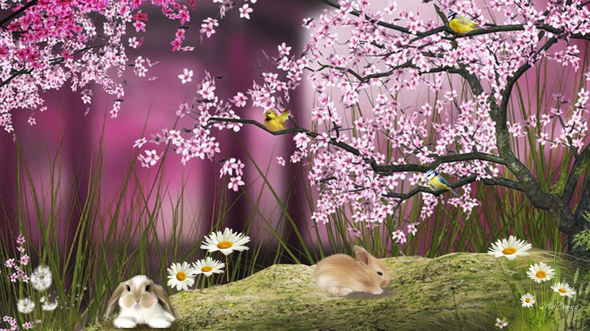 Wallpaper 3d Bunga Sakura Gambar Dp Bbm