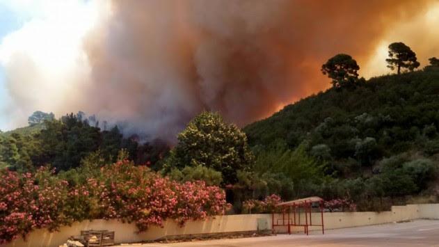 """Ανεξέλεγκτη η φωτιά στη Χαλκιδική – Κάηκαν λυόμενα στο Πόρτο Καρράς – Οι άνεμοι τη """"σπρώχνουν"""" σε ξενοδοχείο! (ΦΩΤΟ, ΒΙΝΤΕΟ)"""