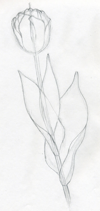 Easy Drawing In Pencil At Getdrawings Free Download