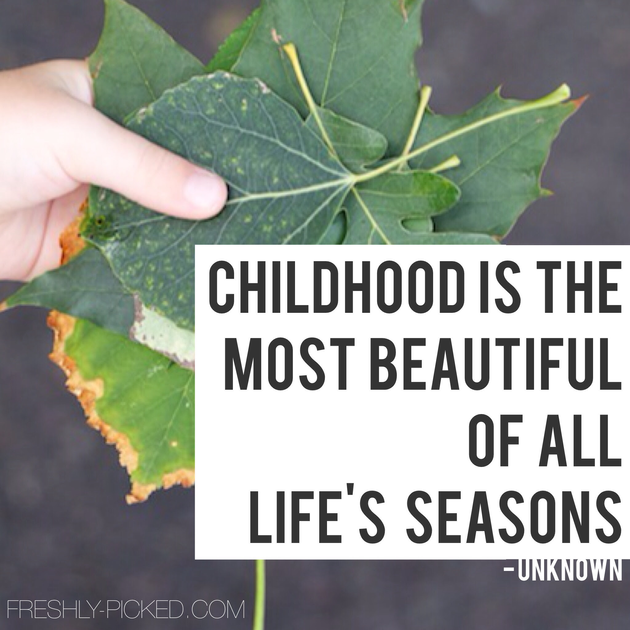 Quotes About Childhood Photo 24 Quotes