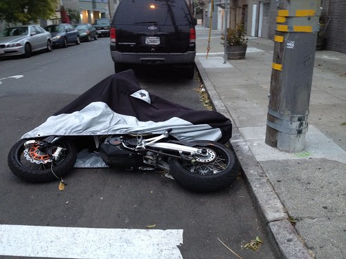 fallen cycle.JPG