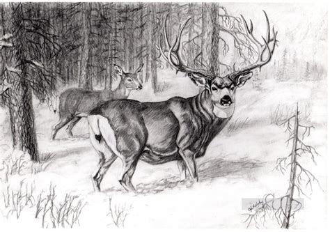 deer pencil drawing black  white painting  oil  sale