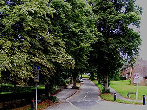 English: Chiltern Close, Berkhamsted A bucolic...
