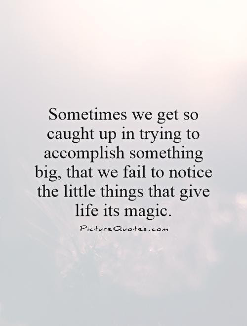 Quotes About Appreciating Little Things 27 Quotes