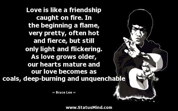 Love Is Like A Friendship Caught On Fire In The Statusmindcom