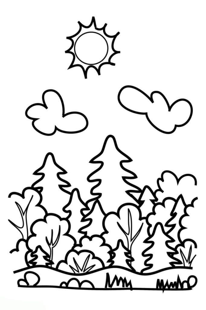 20 Ideen Für Wald Ausmalbilder - Beste Wohnkultur ...