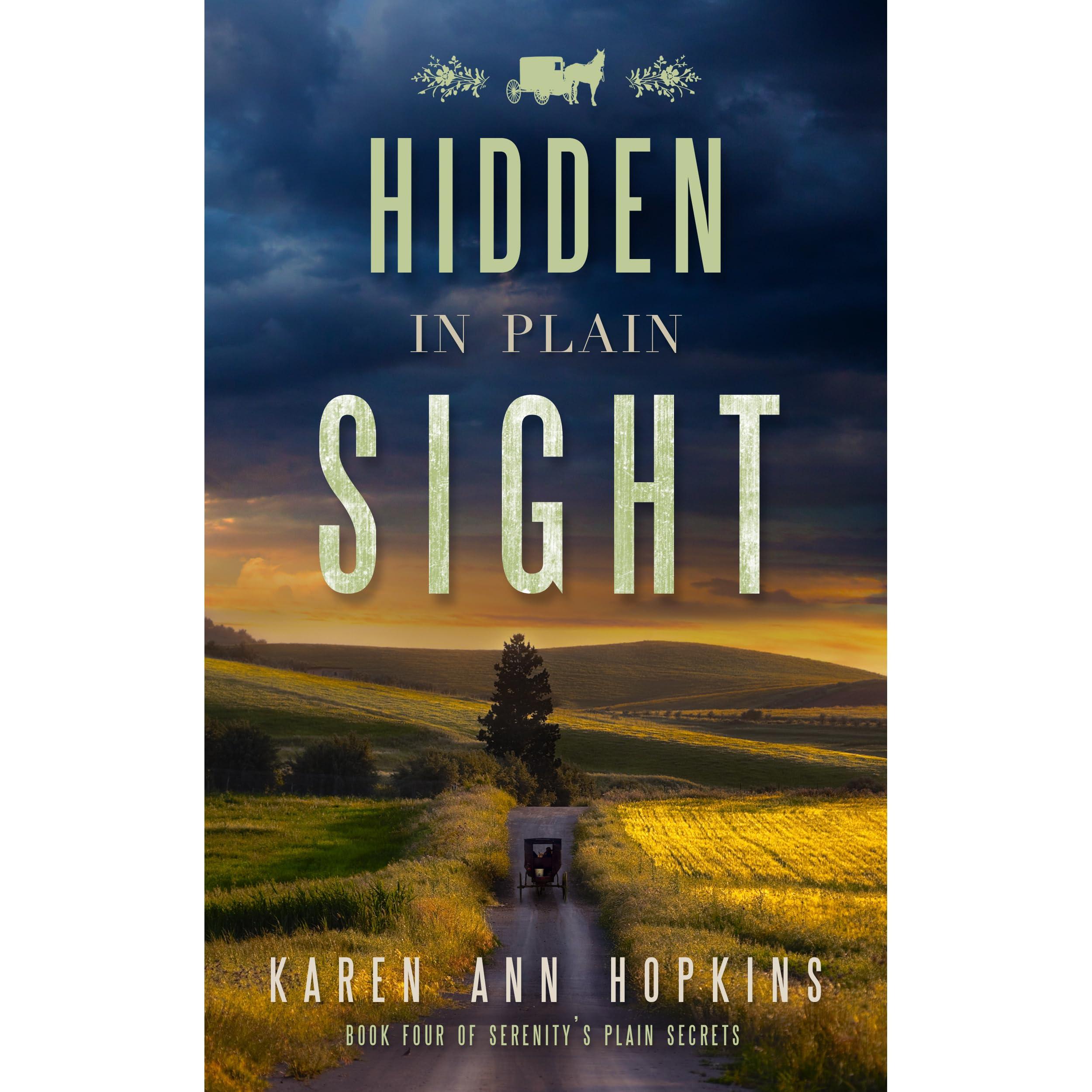 Hidden In Plain Sight Serenity S Plain Secrets 4 By