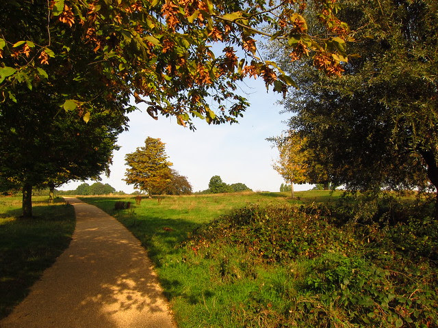 Path on the Tumulus Field