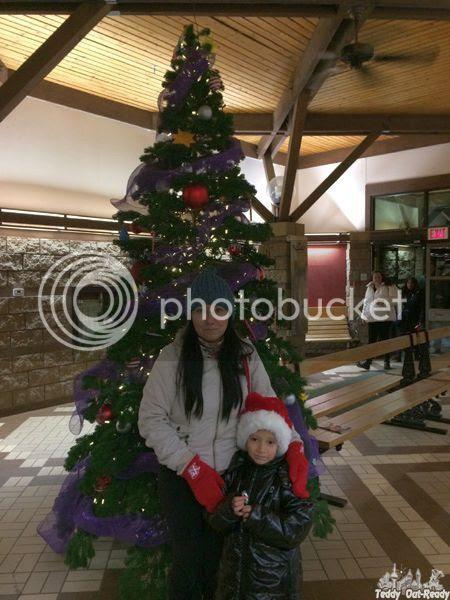 Christmas Tree Black Creek