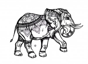 elephant te print for free  elephants adult coloring pages