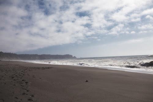 beach2 copy