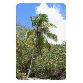 Palm Calling Premium Flexi Magnet