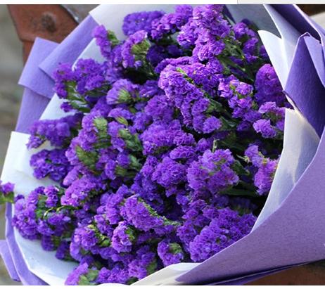 Resultado de imagen para flor statice