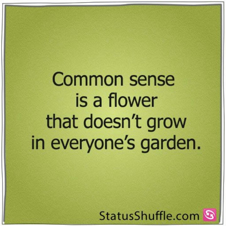 Quotes About Lack Of Common Sense 22 Quotes
