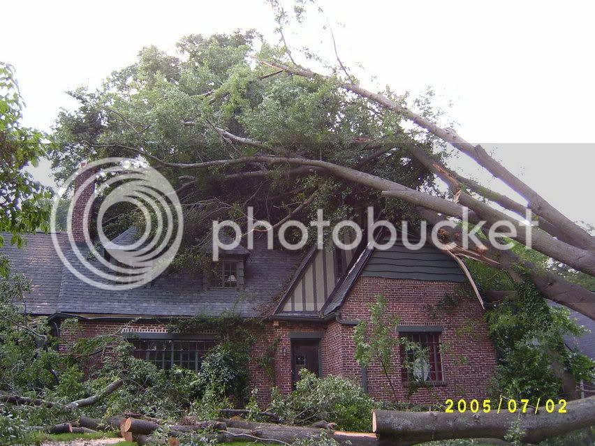 Storm damage in Vi-Hi