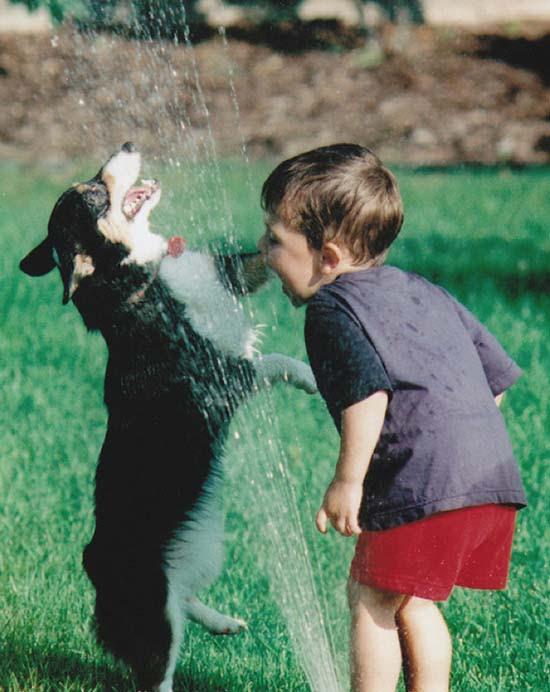 Σκύλοι vs Ποτιστήρια (3)