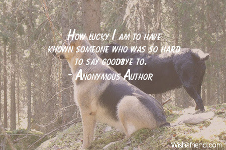 Anonymous Author Quote How Lucky I Am To Have Known Someone Who Was