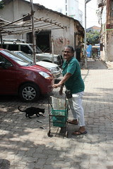 The Cat Feeding Lady of Bandra by firoze shakir photographerno1