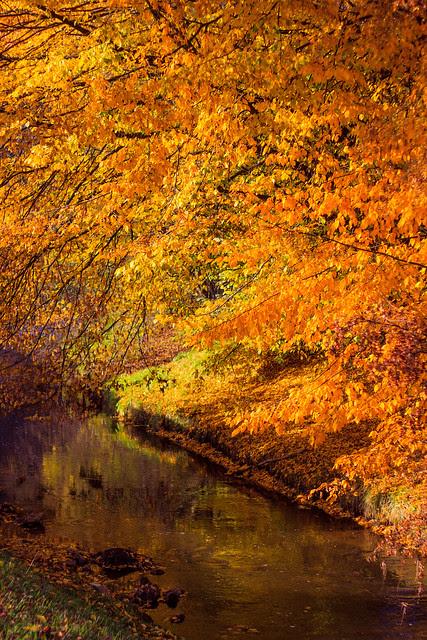 Herbst an der Pegnitz