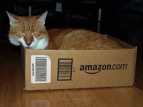 Harvey, a.k.a. Mr. Puddy -- brought to you by Amazon.com by Chickenboots.