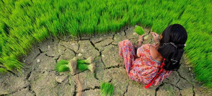 As mudanças climáticas provocam a degradação de ecossistemas e de recursos, sobre os quais tantos dependem a sobrevivência humana. Foto: PNUMA