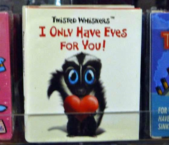 Book only have eyes for you