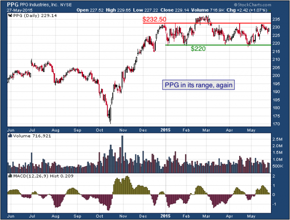 1-year chart of PPG (NYSE: PPG)