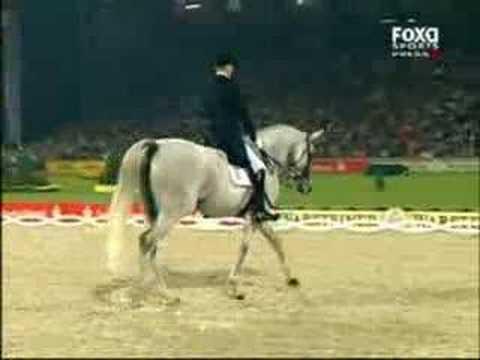 Vui là chính: Ngựa khiêu vũ