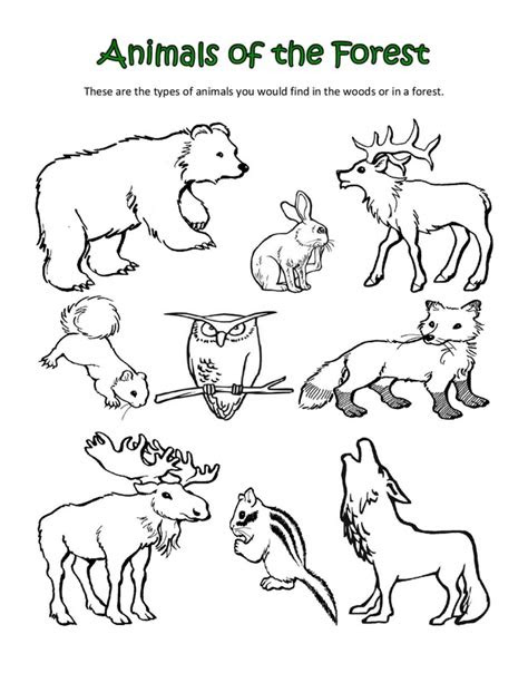 prairie animals pages coloring pages