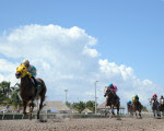 Flutterby wins the Gold Mover at Gulfstream--August 22, 2015
